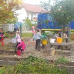 Herbstputz (2)